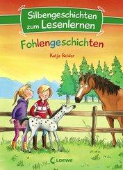 Silbengeschichten zum Lesenlernen - Fohlengeschichten (eBook, ePUB)