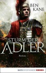 Sturm der Adler (eBook, ePUB)