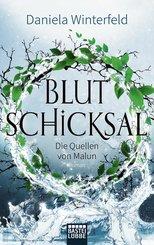 Die Quellen von Malun - Blutschicksal (eBook, ePUB)