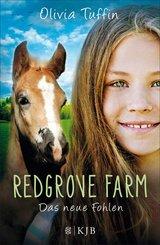 Redgrove Farm - Das neue Fohlen (eBook, ePUB)