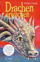 Drachenerwachen (eBook, ePUB)