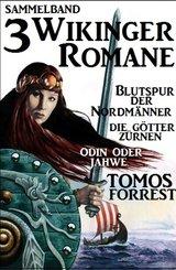 3 Wikinger-Romane: Blutspur der Nordmänner/Die Götter zürnen/Odin und Jahwe (eBook, ePUB)