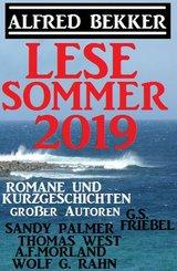 Lesesommer 2019 - Romane und Kurzgeschichten großer Autoren (eBook, ePUB)