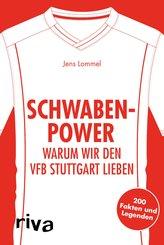 Schwaben-Power (eBook, PDF)