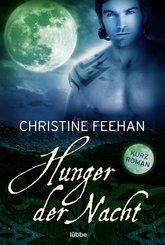 Hunger der Nacht (eBook, ePUB)