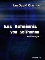 Das Geheimnis von Solthenau (eBook, ePUB)