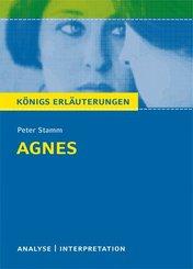 Agnes von Peter Stamm. Textanalyse und Interpretation mit ausführlicher Inhaltsangabe und Abituraufgaben mit Lösungen. (eBook, PDF)