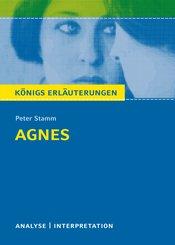 Agnes von Peter Stamm. Königs Erläuterungen. (eBook, ePUB)