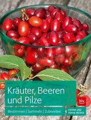 Kräuter, Beeren und Pilze (eBook, ePUB)