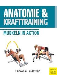 Anatomie & Krafttraining (eBook, ePUB)