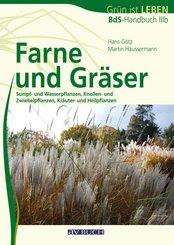 Farne und Gräser (eBook, ePUB)