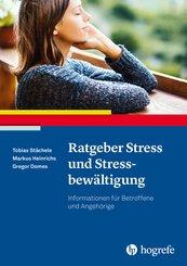 Ratgeber Stress und Stressbewältigung (eBook, PDF)