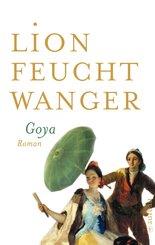 Goya oder Der arge Weg der Erkenntnis (eBook, ePUB)