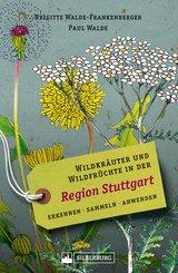 Wildkräuter und Wildfrüchte in der Region Stuttgart. Erkennen, sammeln, anwenden. Wildpflanzen-Ratgeber für Wanderer, Sammler und botanisch Interessierte mit Beschreibungen und Anwendungshinweisen. (eBook, ePUB)