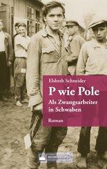 P wie Pole. Ein Roman aus Schwaben (eBook, ePUB)