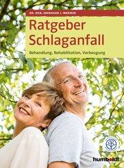 Ratgeber Schlaganfall (eBook, ePUB)