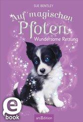 Auf magischen Pfoten - Wundersame Rettung (eBook, ePUB)