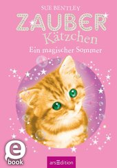 Zauberkätzchen - Ein magischer Sommer (eBook, ePUB)