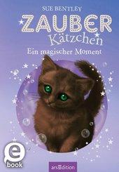 Zauberkätzchen - Ein magischer Moment (eBook, ePUB)