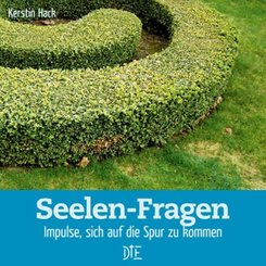 Seelen-Fragen (eBook, ePUB)