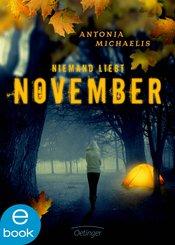 Niemand liebt November (eBook, ePUB)