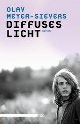 Diffuses Licht (eBook, ePUB)