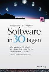 Software in 30 Tagen (eBook, PDF)