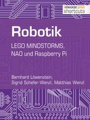 Robotik (eBook, ePUB)