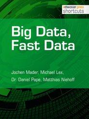 Big Data, Fast Data (eBook, ePUB)