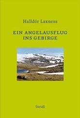 Ein Angelausflug ins Gebirge (eBook, ePUB)