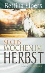 Sechs Wochen im Herbst (eBook, ePUB)