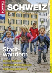 Stadtwandern (eBook, PDF)