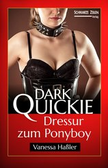 Dressur zum Ponyboy (eBook, ePUB)