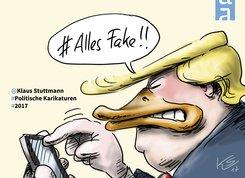 Alles Fake! (eBook, PDF)