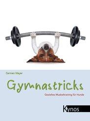 Gymnastricks (eBook, ePUB)