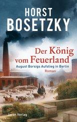 Der König vom Feuerland (eBook, ePUB)