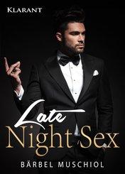 Late Night Sex. Erotischer Roman (eBook, ePUB)