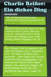 Ein dickes Ding (eBook, ePUB)