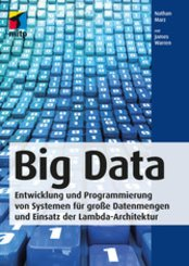 Big Data (eBook, PDF)