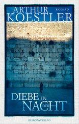 Diebe in der Nacht (eBook, ePUB)