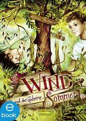 Wind und der geheime Sommer (eBook, ePUB)