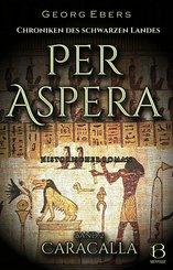 Per Aspera. Historischer Roman. Band 2 (eBook, ePUB)