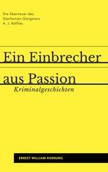 Ein Einbrecher aus Passion (eBook, PDF)