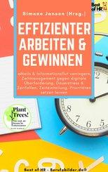 Effizienter Arbeiten & Gewinnen (eBook, ePUB)