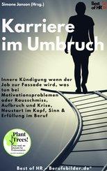 Karriere im Umbruch (eBook, ePUB)