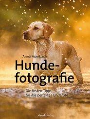 Hundefotografie (eBook, ePUB)