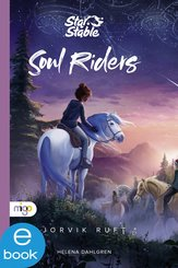 Star Stable: Soul Riders 1 (eBook, ePUB)