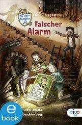 Die Isar-Detektive 1 (eBook, ePUB)