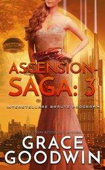 Ascension-Saga: 3 (eBook, ePUB)