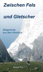Zwischen Fels und Gletscher (eBook, ePUB)